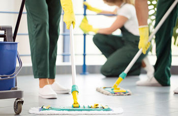 Move-in Cleaning Services